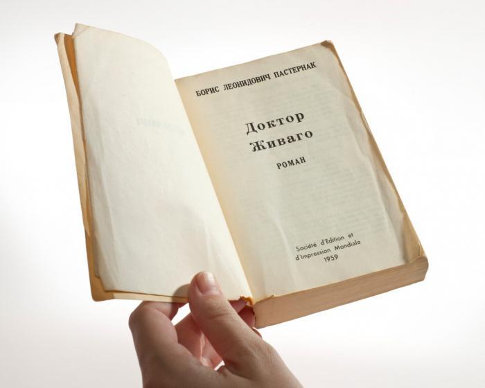norma književnog jezika