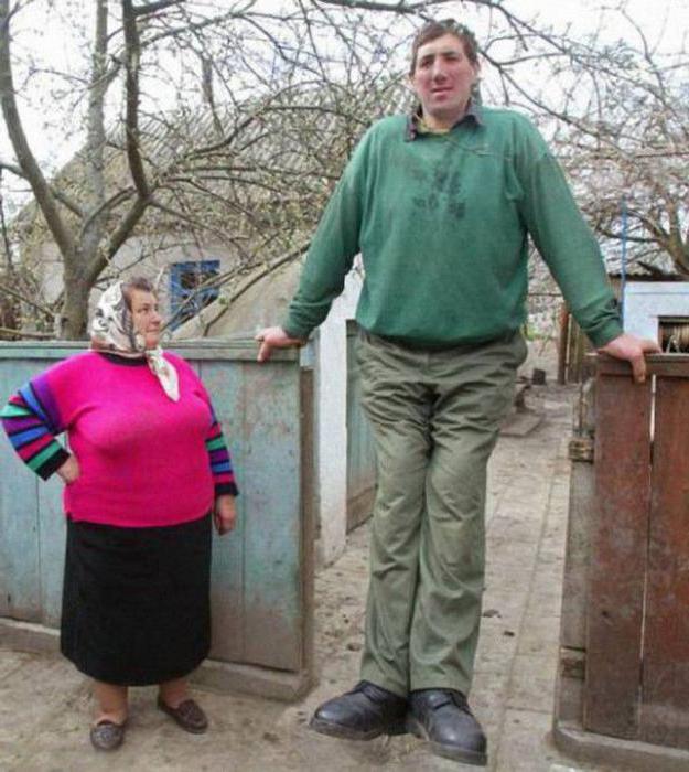 Леонид Степанович стадник узрок смрти