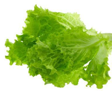 zeleni list zelene salate