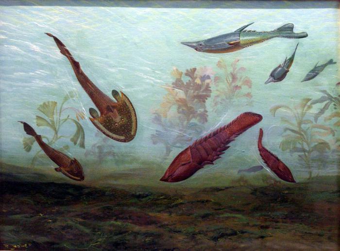 la vita nell'era paleozoica