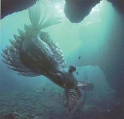sviluppo della vita nell'era paleozoica