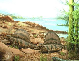 periodi dell'era paleozoica