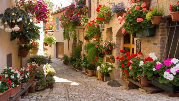 Italia Mar Ligure