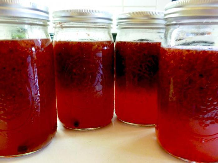 liquore alla ricetta della vodka al mirtillo rosso