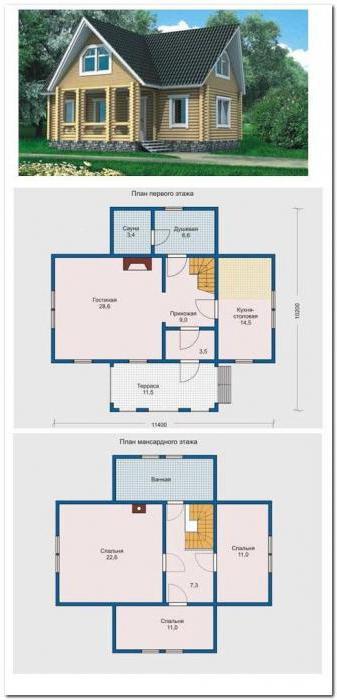 Hišne hiše