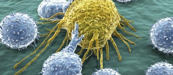 linfociti abbassati