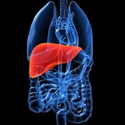 заболявания на черния дроб при деца