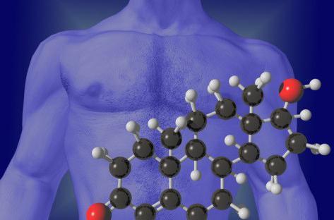 hormona testosterona