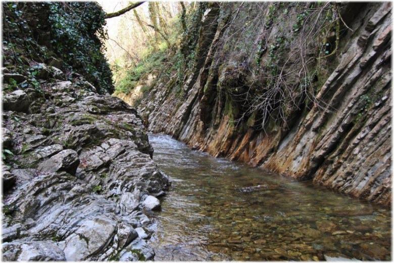 Il torrente nella parte inferiore della gola di Mammadova