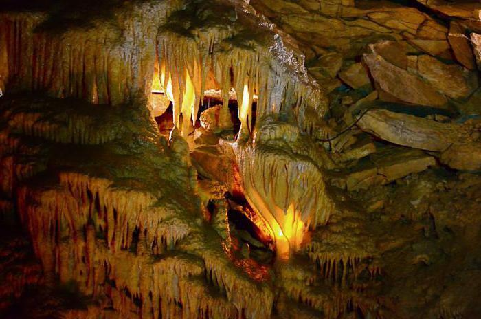grotta di mammut