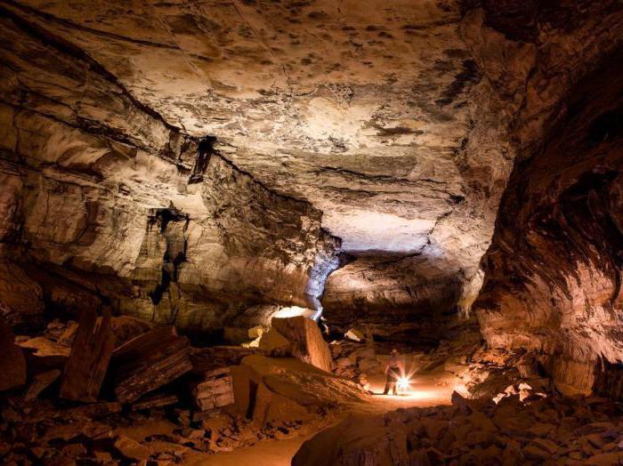 fatti sulle grotte di mammut