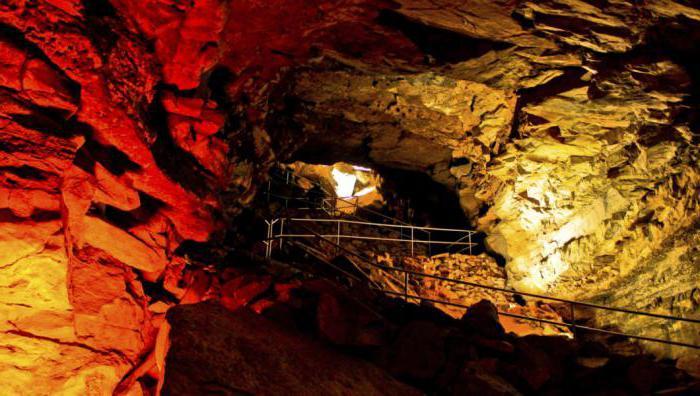 dov'è la grotta dei mammut