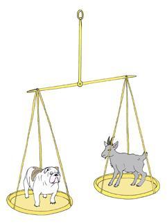 тржишна равнотежа