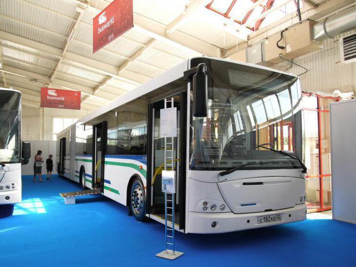 автобус МАЗ-206