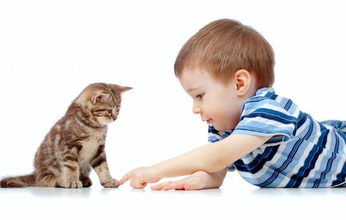 MacGioror при деца с лямблиоза