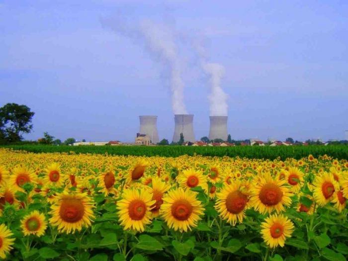 Nuklearne sile