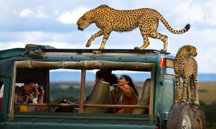 Момбаса (Кения): отзиви за туристи