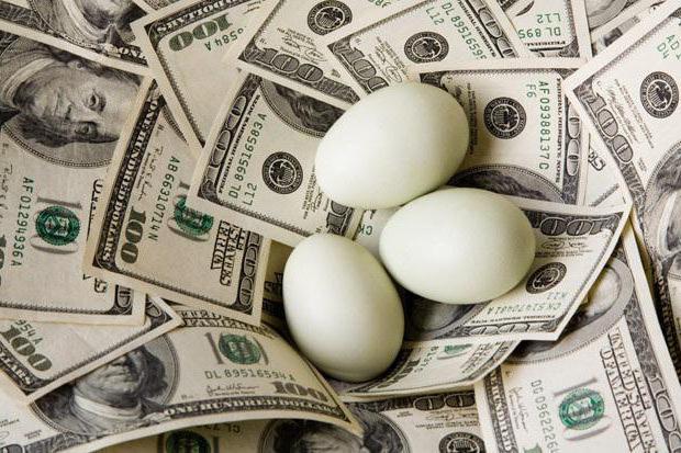 gioco cashout di denaro degli uccelli