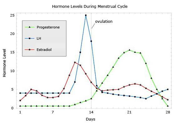 kršenje menstruacije