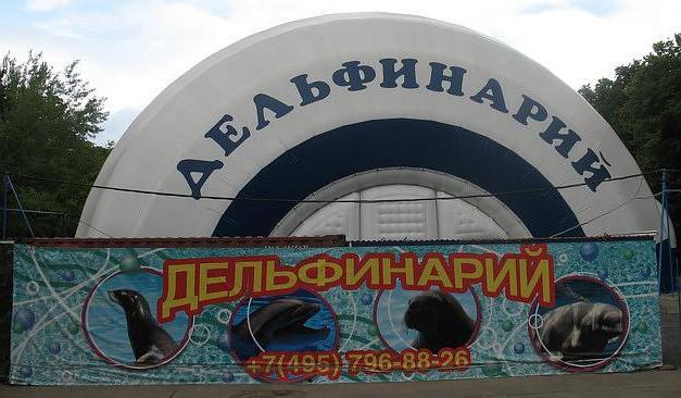 Мосцов Долпхинариум он Семеновскаиа