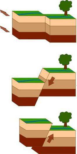 Покрети Земљине коре