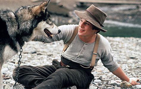 orrori di film di lupo