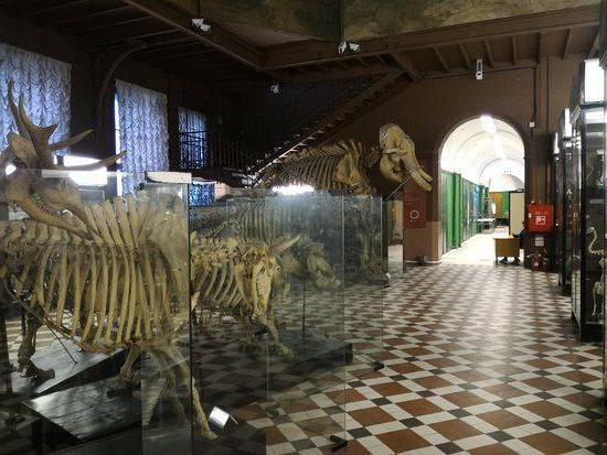 Dvorane Zoološkog muzeja Moskovskog državnog sveučilišta