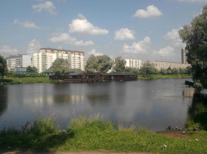 Murinsky park