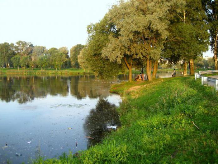 Murinsky Park St. Petersburg