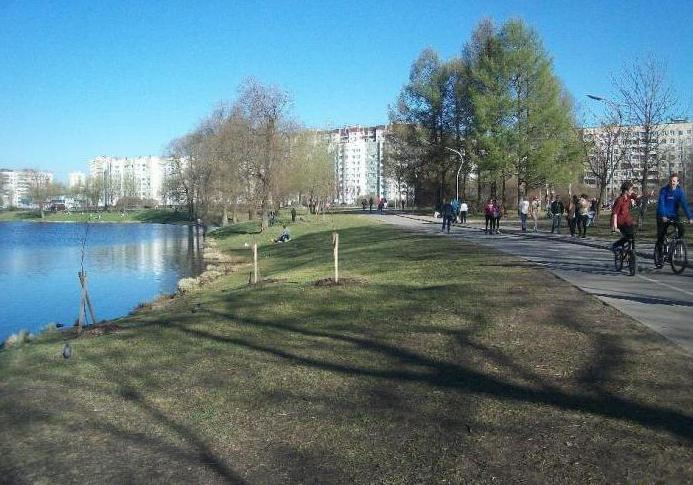 Fotografija parka Murinsky Park