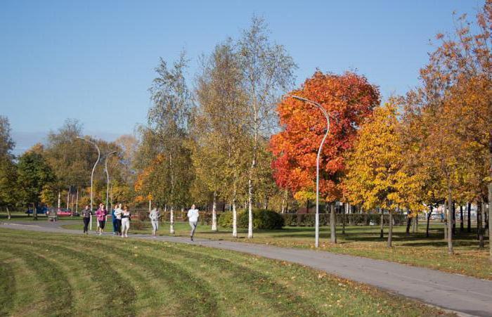 Murinsky park kako priti