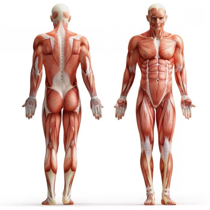 Nekroza mehkih tkiv
