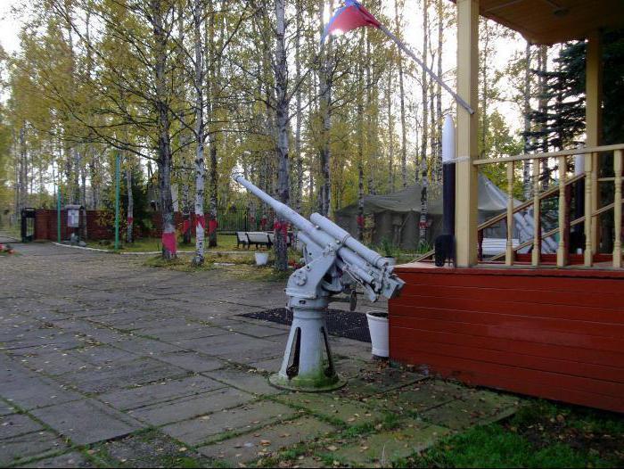 Ladoga Lake Road Museo della vita