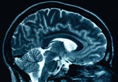 Lo sviluppo della memoria umana