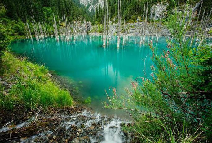 Jezero Kaindy u Kazahstanu