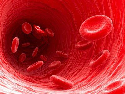 продукти за разреждане на кръвта по време на бременност