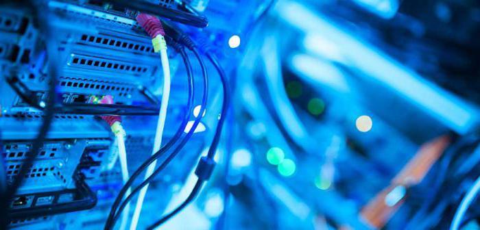 místní program správy sítě