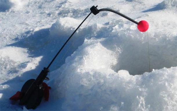 come scegliere un cenno del capo per una canna da pesca invernale