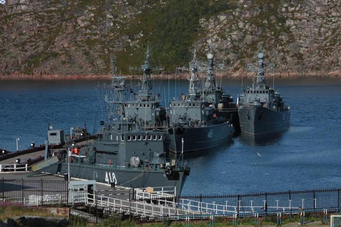 severne flote