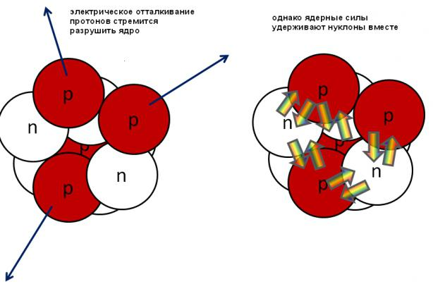forze nucleari