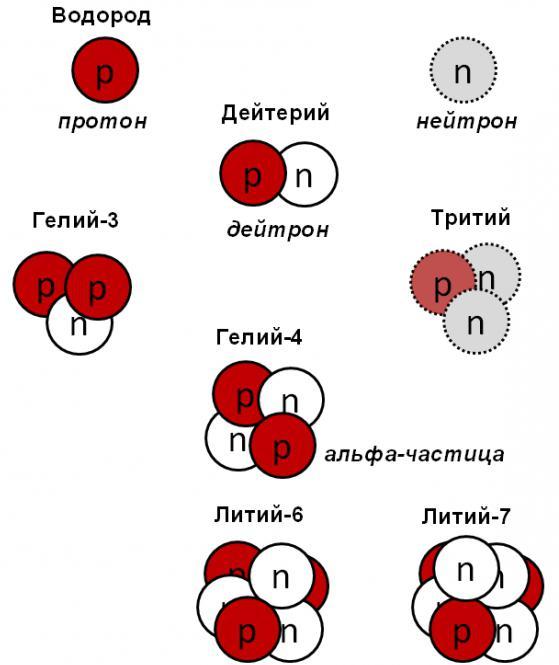 forze nucleari della struttura nucleare