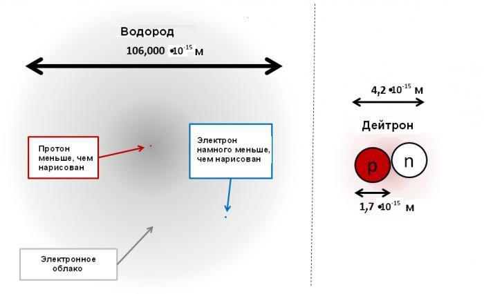 struttura nucleare delle forze nucleari