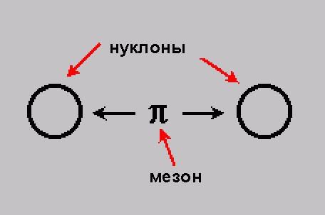 forze nucleari di interazione nucleare