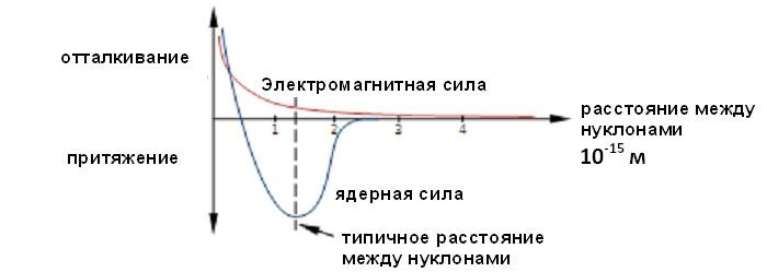 fisica delle forze nucleari