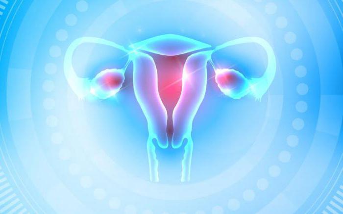 na kateri dan cikla je treba jemati progesteron