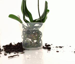 Прозрачни саксии за орхидеи
