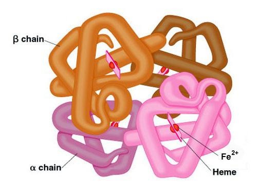 biologija anorganskih snovi