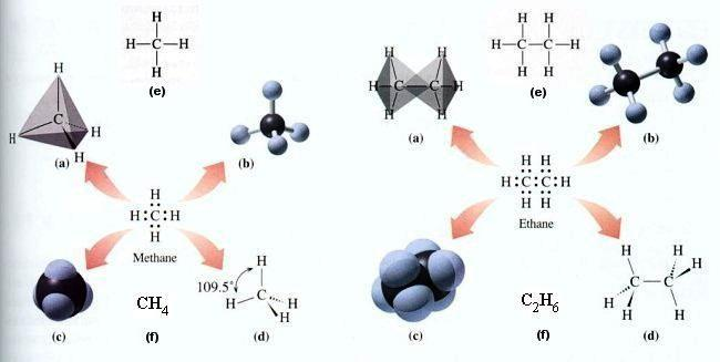 materia organiczna