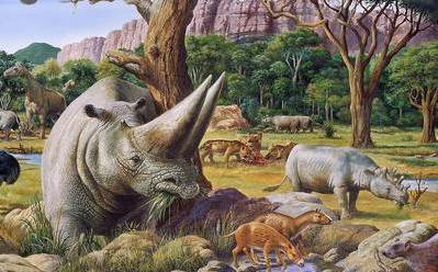 Paleogeński świat zwierząt