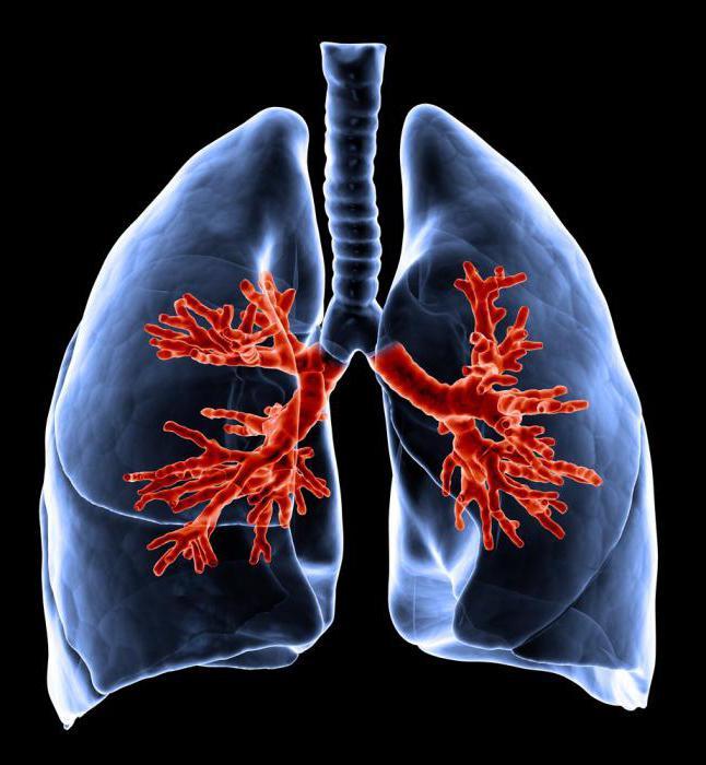 tipi di respirazione anormale negli esseri umani